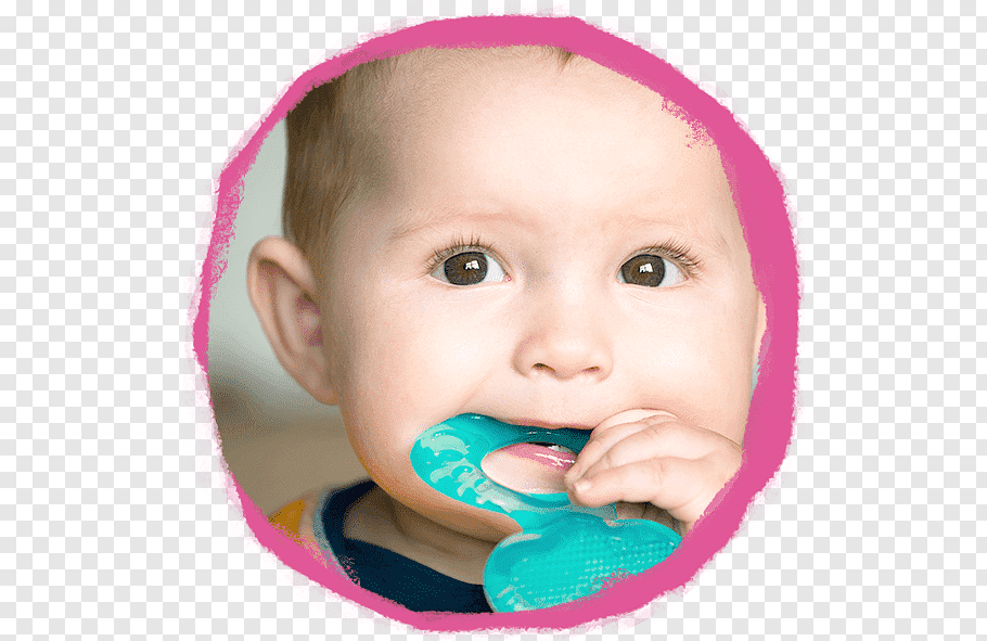 Teething Baby Food Infant Child Gums, child free png.