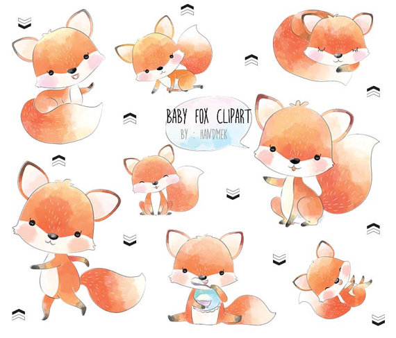 Baby fox ,cute fox clip art, instant download, PNG file.