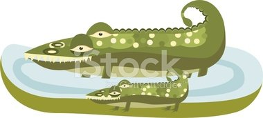 Mother and Baby Gator stock vectors.