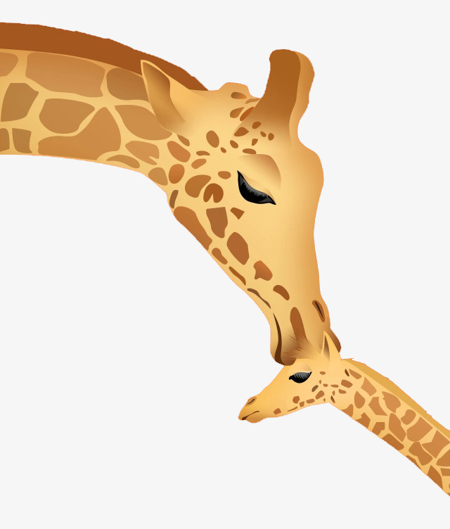 Mother And Baby Giraffe, Baby Clipart, G #56906.
