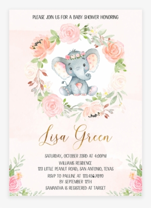 Baby Elephant PNG Images.