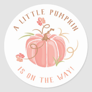 Little Pumpkin Baby Shower Sticker Girl.