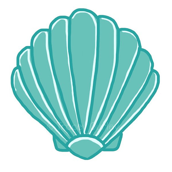 Turquoise Scallop Shell.