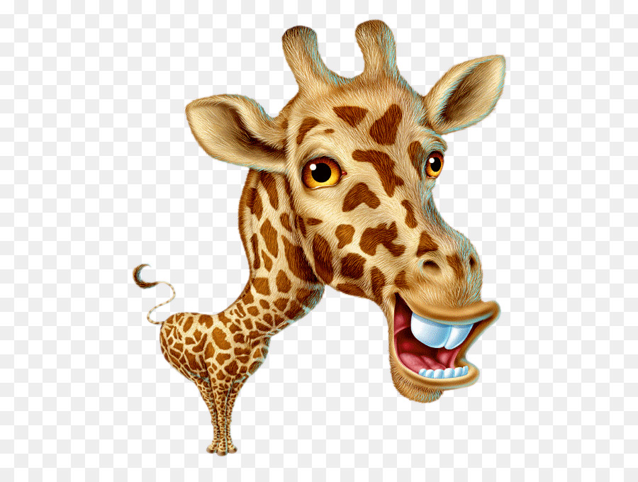 Giraffe Cartoon png download.