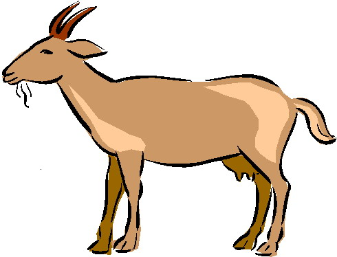 Clip Art Baby Goat Clipart.