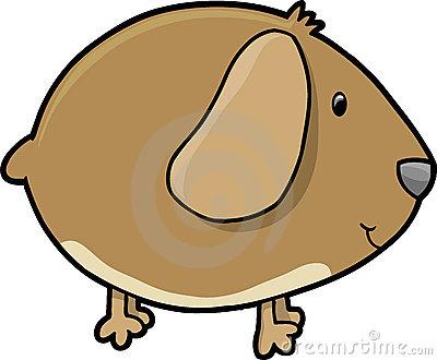 Cute guinea pig clipart.