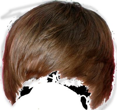 Hair PNG Transparent Hair.PNG Images..