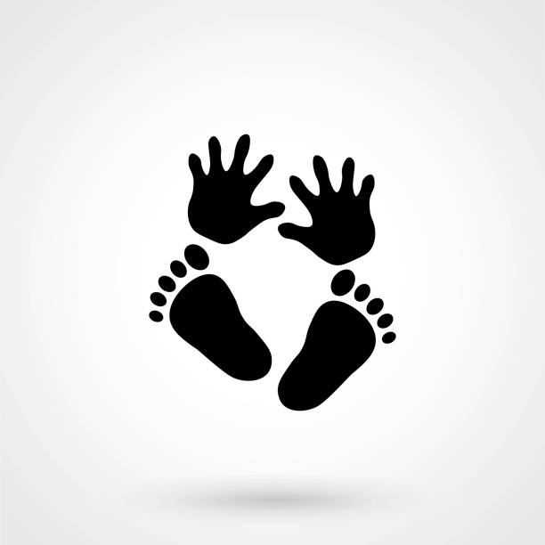 Best Baby Hands And Feet Illustrations, Royalty.