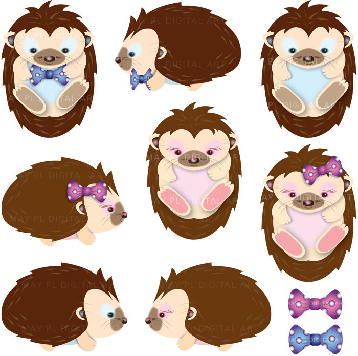 Hedgehog Clipart Digital Hedgehog Clip Art Blue Pink Cute Baby.
