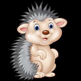 Hedgehog Images.