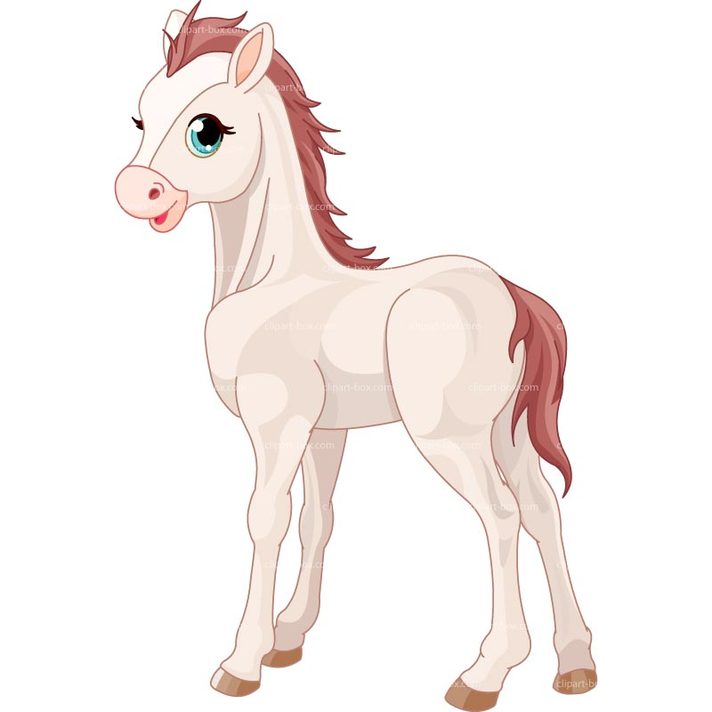 CLIPART BABY HORSE.