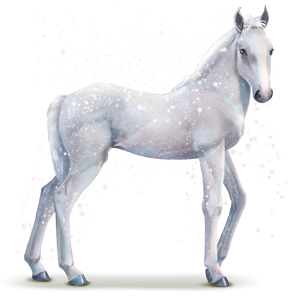 Baby Horse (PNG).