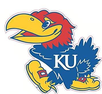 Amazon.com: 6 inch KU Big Jay Decal University of Kansas.
