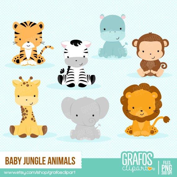 BABY JUNGLE ANIMALS.