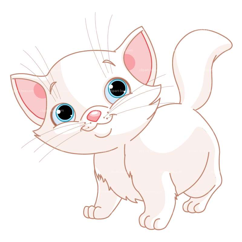 CLIPART BABY WHITE CAT.