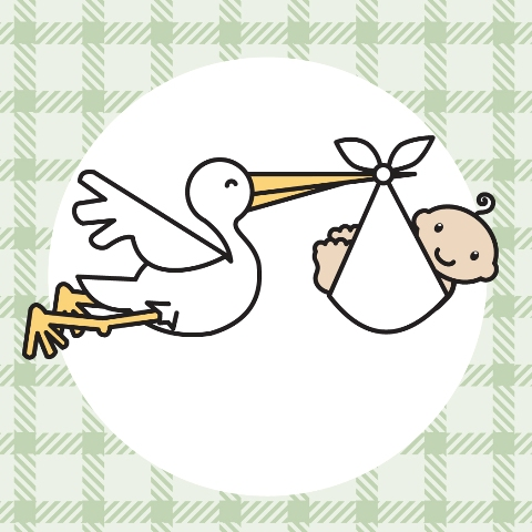 Stork with baby clipart.