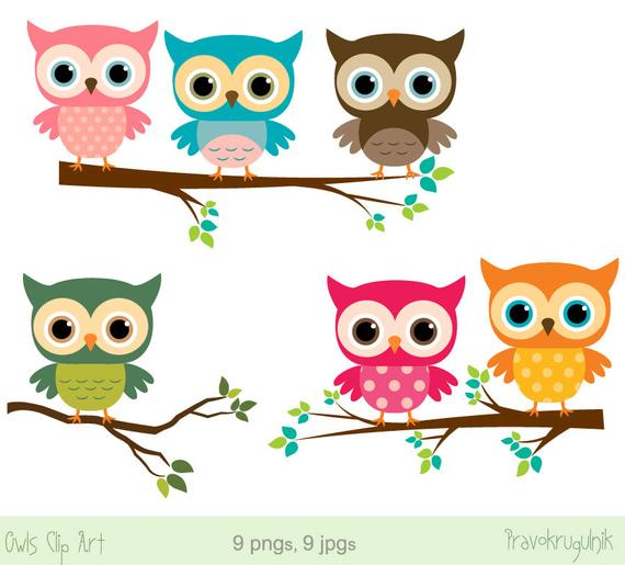 Baby owl clip art, Girl owl clipart, Rainbow owls on branches, Cute digital  owl, Pink birthday owl clipart, Owl baby shower, commercial use.