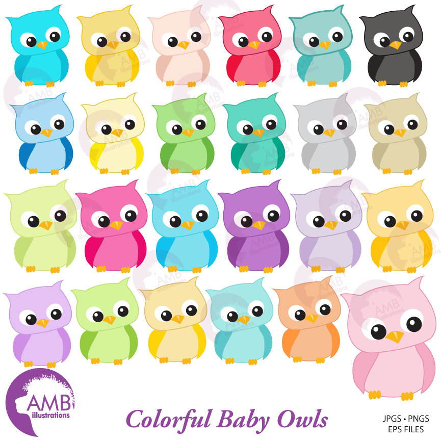 Owl Clipart, Colorful Baby Owls for Clipart and Card Design, AMB.