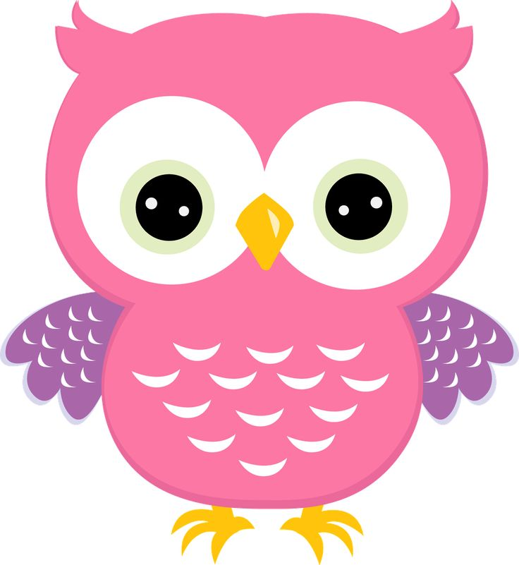 Baby owl clipart png 3 » Clipart Station.