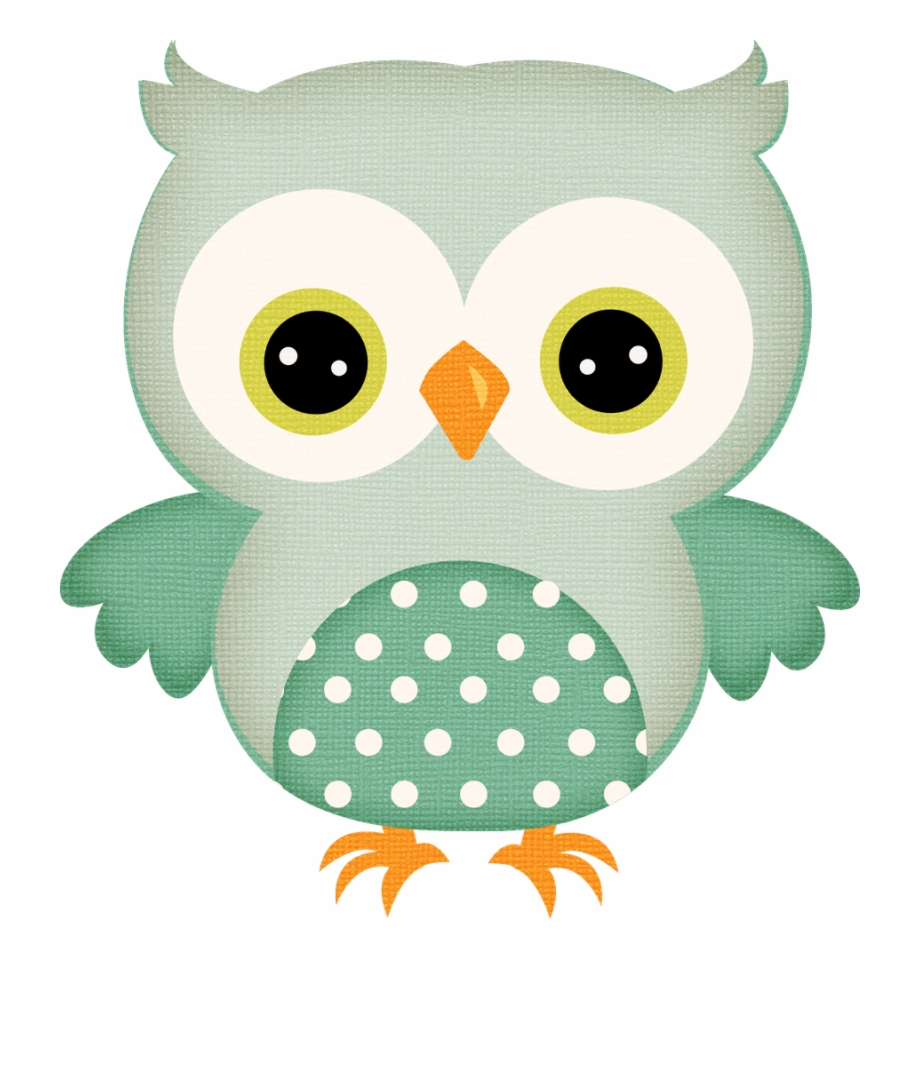 Baby Owl Png.