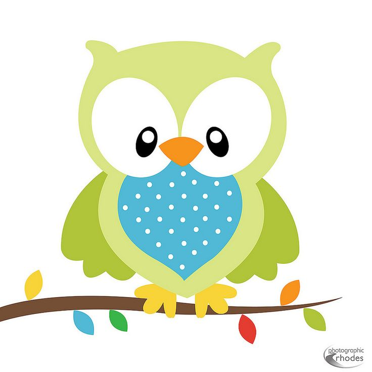 Free Baby Owl Png, Download Free Clip Art, Free Clip Art on Clipart.