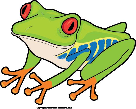 Free Jungle Frog Cliparts, Download Free Clip Art, Free Clip.