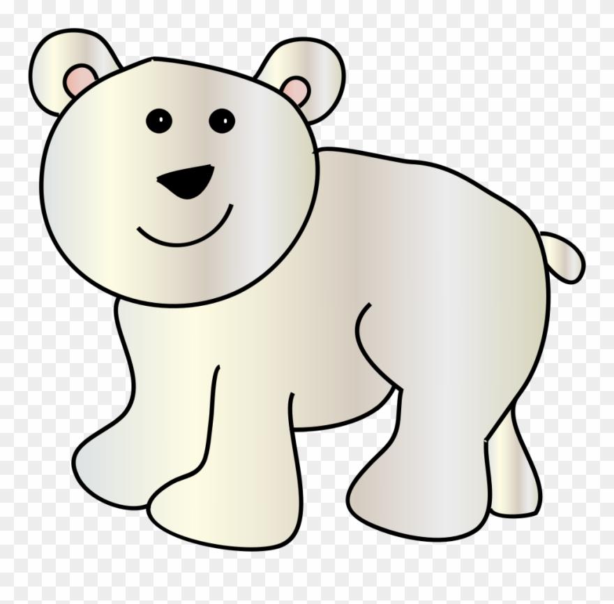 Baby Polar Bear American Black Bear Polar Bear Cubs.