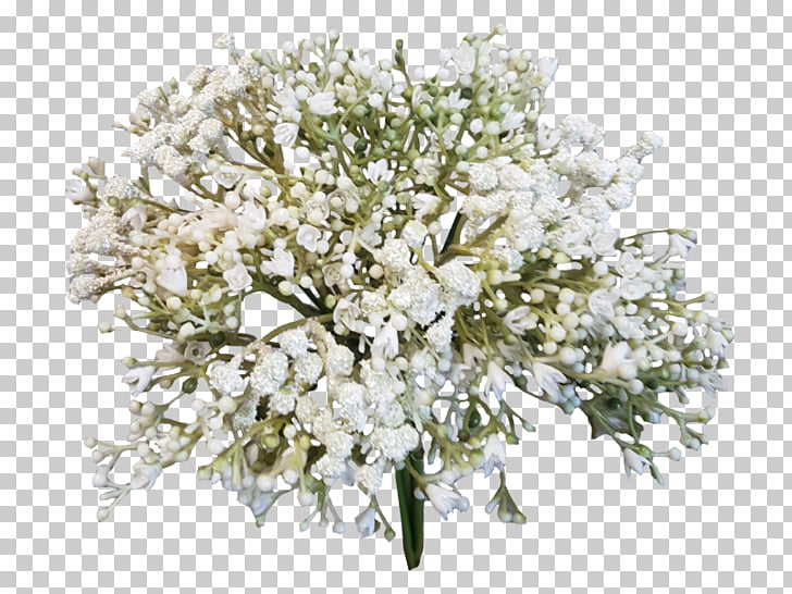 Flower bouquet Baby\'s.