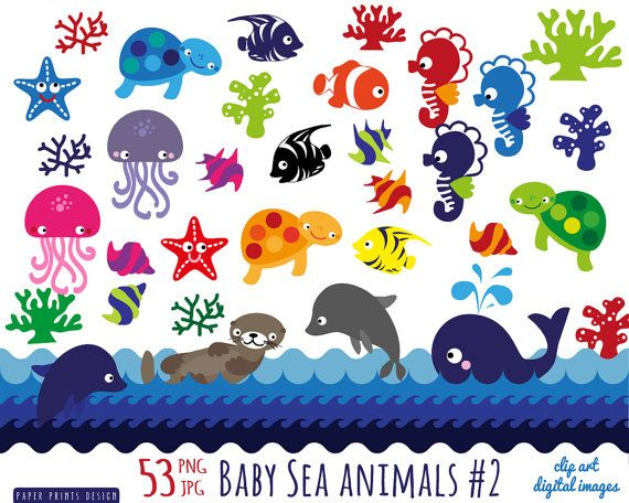 54 baby sea animals clipart, sea animals patterns clipart.