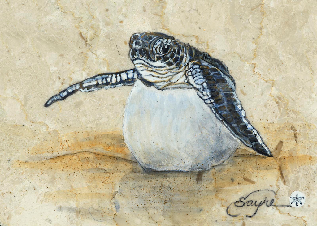 Turtle painting. in 2019.