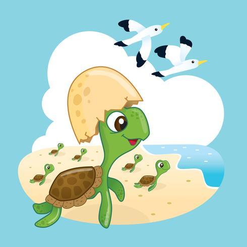 Cute Sea Turtle.