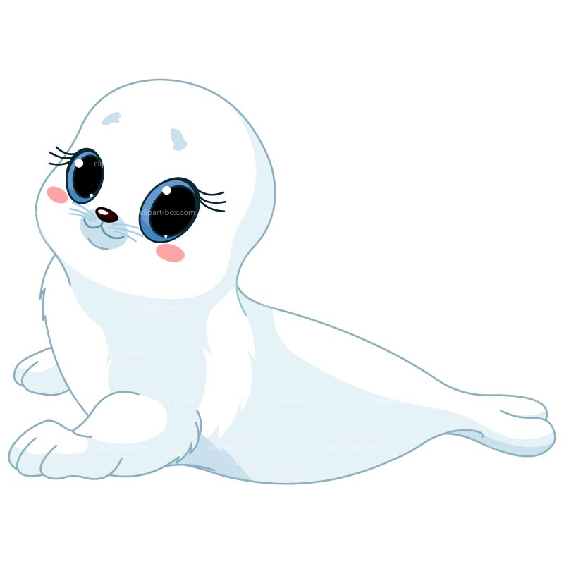 Baby Seal Clipart.