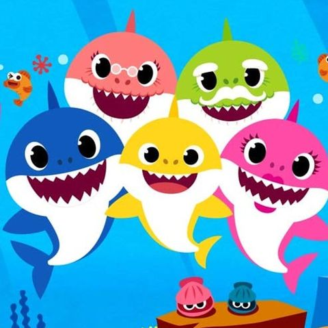 What Is Baby Shark?.