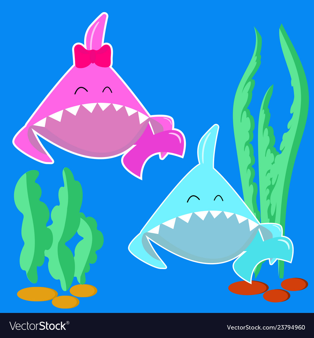 Blue baby shark boy and pink baby shark girl.