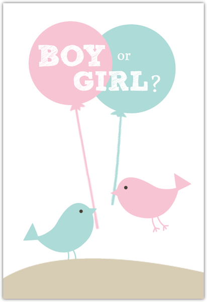 Pink And Blue Birds Neutral Baby Shower Invite.