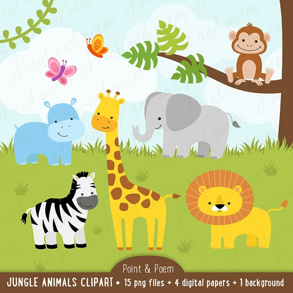 Jungle clip art , Animals clip art, Digital Papers, Baby, Cute, Baby  Shower, Birthday Party, commercial use.