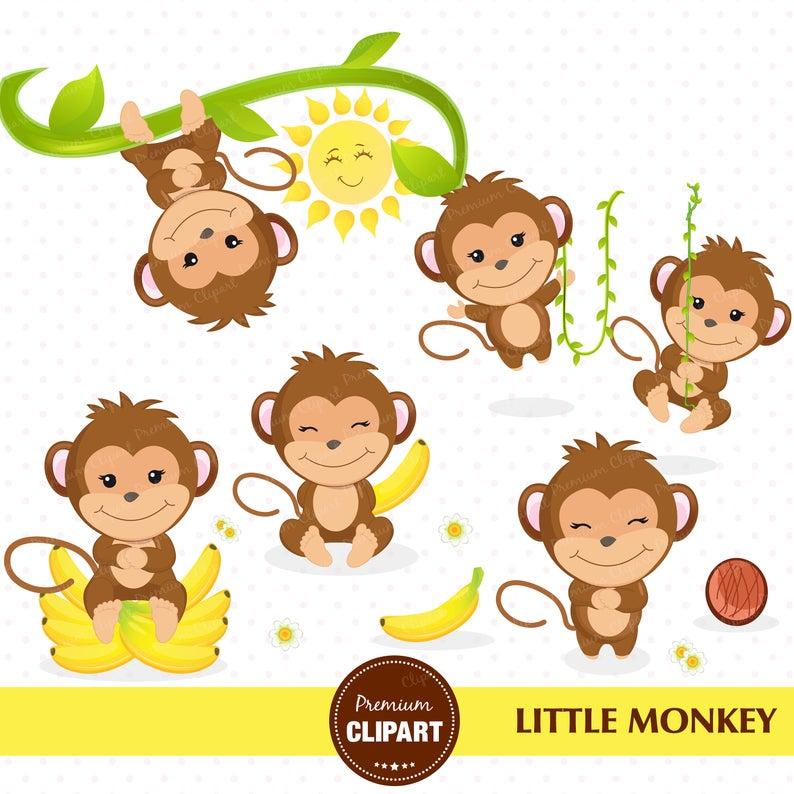 Monkey clipart, Monkey boy clipart, Monkey baby shower, Monkey nursery,  Jungle animals, Safari nursery, Safari animal clipart.