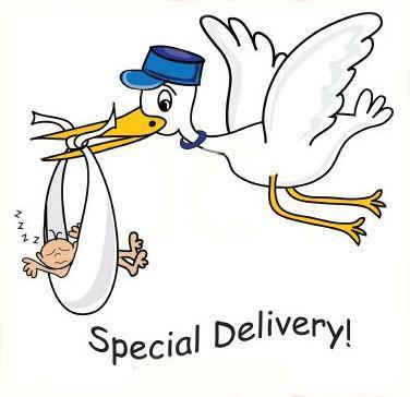 60+ Baby Shower Stork Clipart.