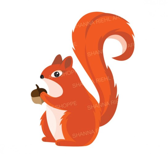 Red Squirrel clipart baby squirrel.