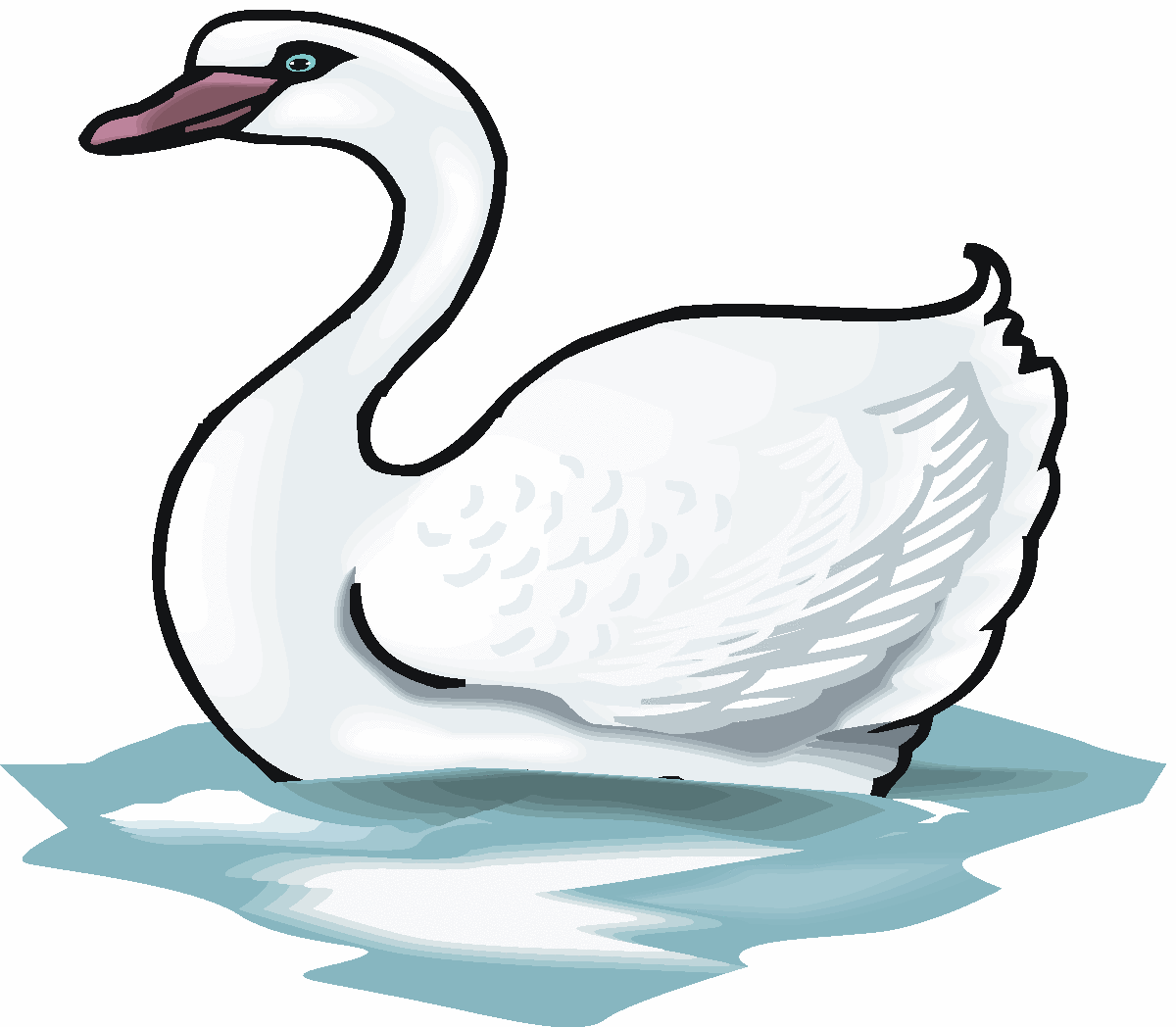 Swan Pictures.