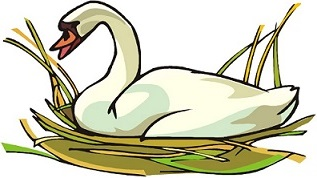 Free swan clipart 4.