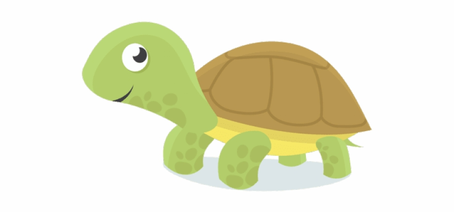 Sea Turtle Clipart Draw Baby.