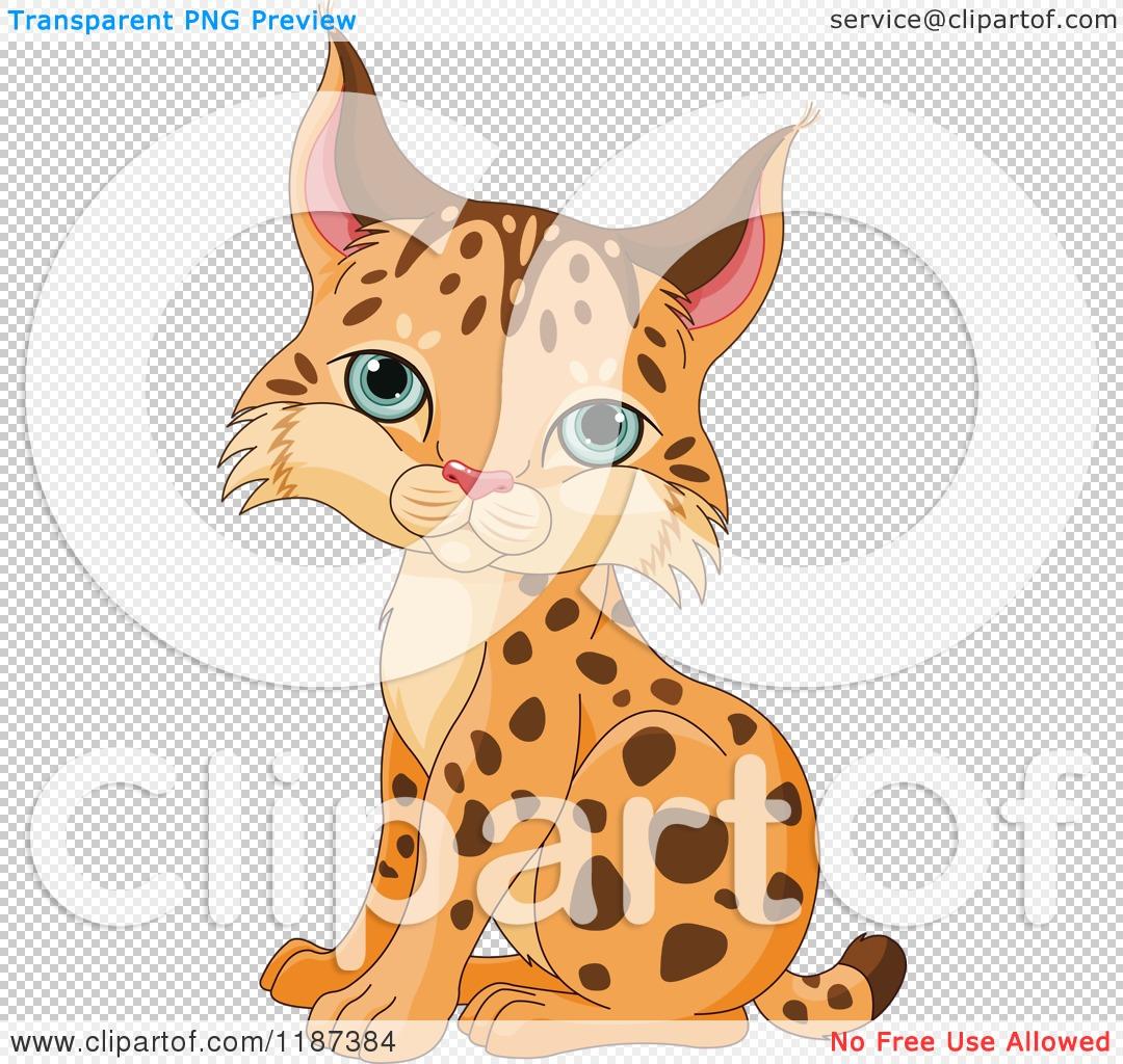 Cartoon of a Cute Baby Bobcat Cub Sitting.