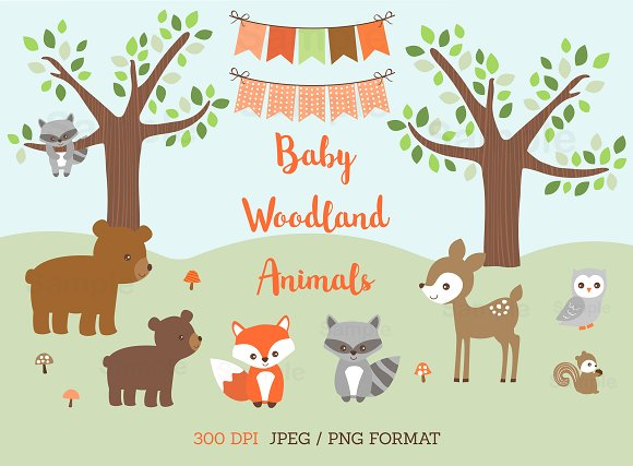 Baby Woodland Animal Clipart.
