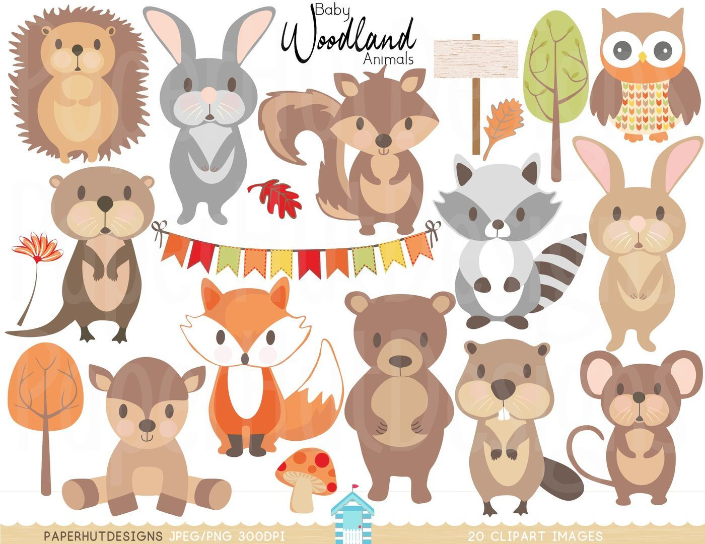 Baby Woodland Animals Clipart By PaperHutDesigns.