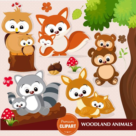 Woodland animals clipart, Woodland baby shower clipart, Baby.