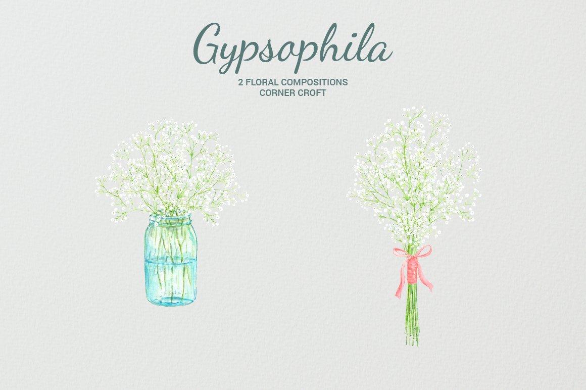 Watercolor gypsophila, baby's breath, mason jar flowers, gypsophila.