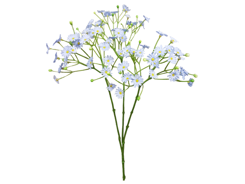 Download Blue Cut Bouquet Breath Flower Baby'S.