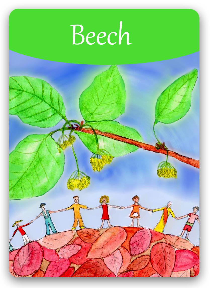 Bach Flower Online Cards.