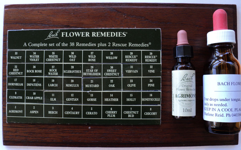 Bach Flower Remedies Treatment bottle.